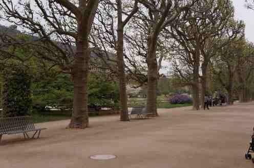 Jardin des Plants 4